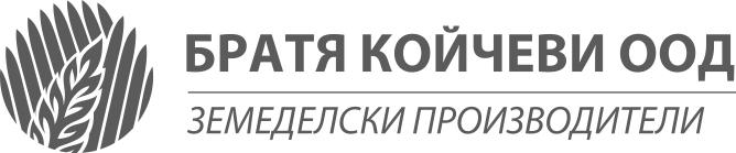 Братя Койчеви